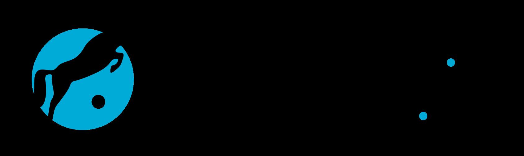 Verkaufspferde.cz/horsesforsale.cz logo